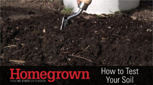 Cover photo for Qualla Boundary Soil Tests: Test Your Garden, Lawn or Farm's Soil