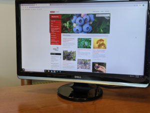 computer monitor with website