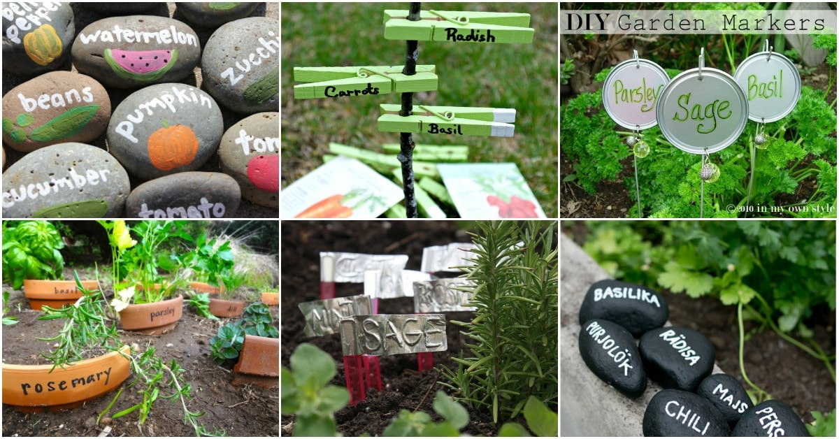 Plant signs