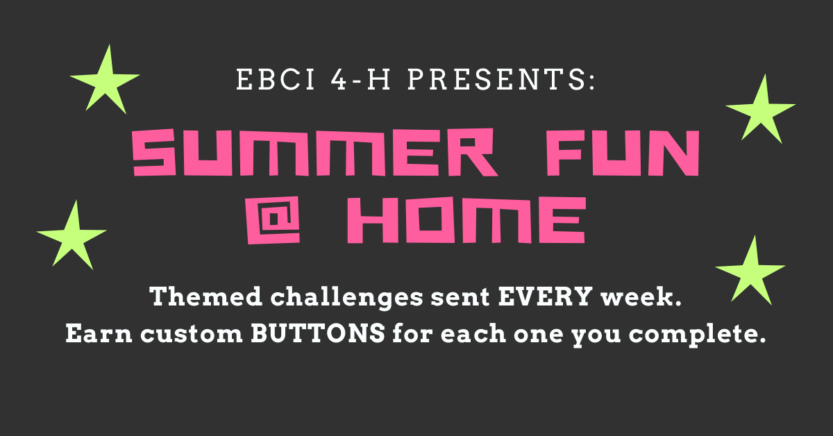Summer Fun at Home banner