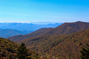 Cover photo for Take Your Family 'Leaf Looking' on the Blue Ridge Parkway