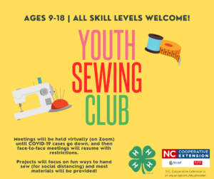 Cover photo for Join Our 4-H Youth Sewing Club This Fall!