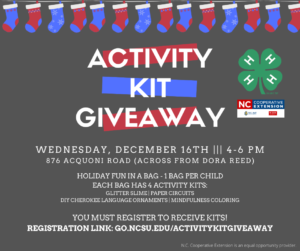 Cover photo for Home for the Holidays?  Kill Boredom With 4-H Activity Kits
