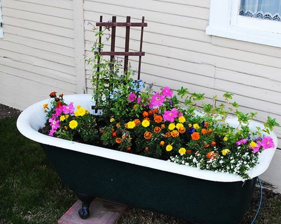Example of an unusual raised bed idea using an old bath tub